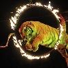 Цирки в Агрызе